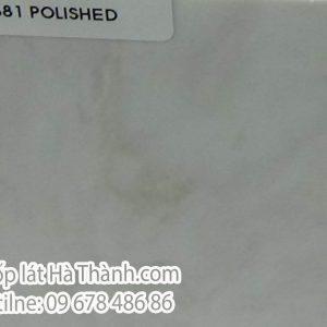 vicostone bq 8881